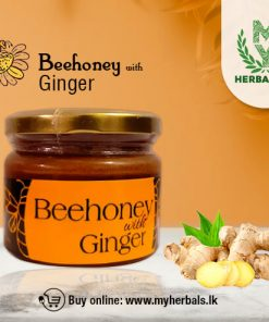 Pure Bee Honey with Ginger-www.myherbals.lk